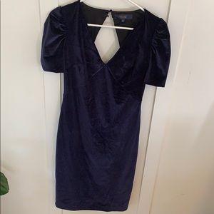 Beautiful Velvet Dress!